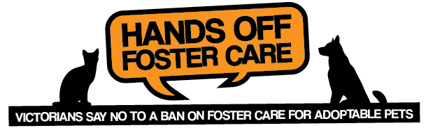 Hands Off Foster Care